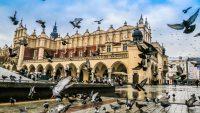 Władze Krakowa chcą znacząco podnieść ceny parkowania w mieście